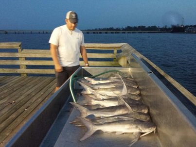 The northshore fishing report fishing reports from lake for Lake pontchartrain fishing