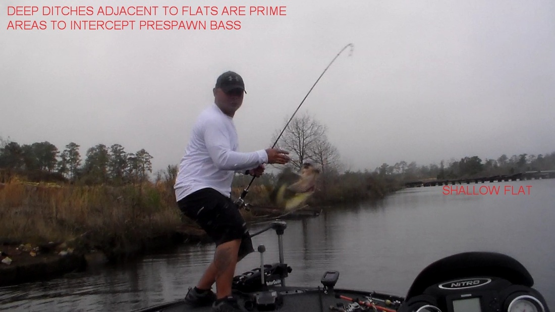 Prespawn bass fishing reports from lake pontchartrain for Fishing lake pontchartrain